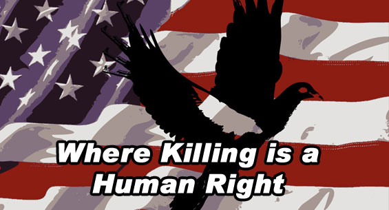 Where Killing is a Human Right...